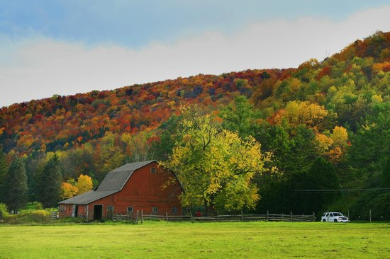 Allegheny National Forest Visitors Bureau: Scenic Route 6-fall foliage