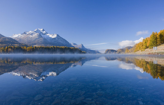 Golden autumn at Lake Sils, Engadin St. Moritz