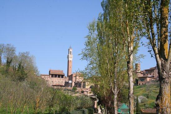 All'Orto de' Pecci: da noi si vede la Torre del Mangia