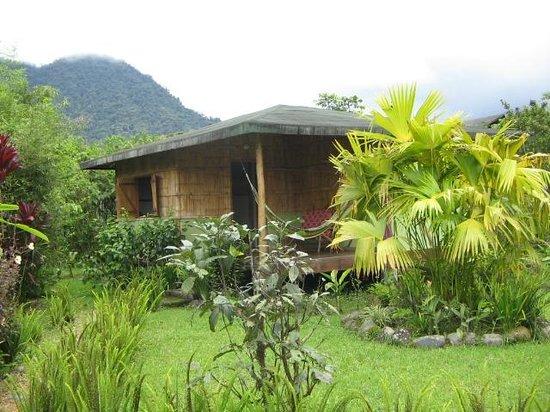 Cabanas Bambu, Mindo: Habitacion  para 4 personas