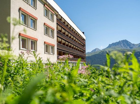 Arosa Mountain Lodge: Die Mountain Lodge im Sommer