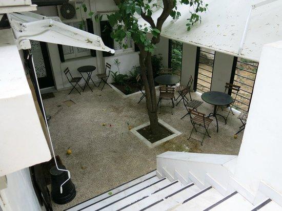 Athens Green Apartments: Shared Garden