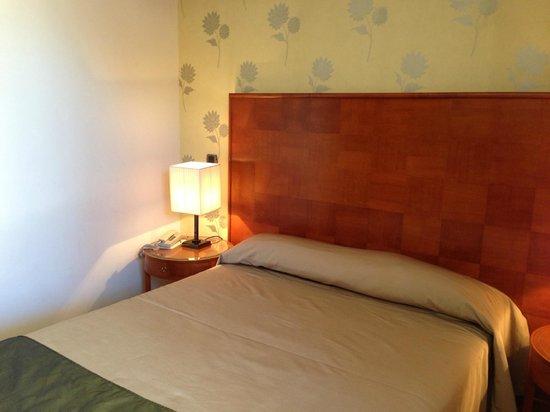 Hotel delle Nazioni: Standard Room