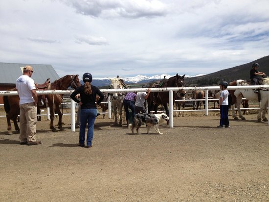 Snow Mountain Ranch: Getting ready for the trail ride