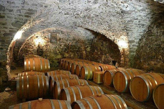 Montpellier Wine Tours Tours: Caveau