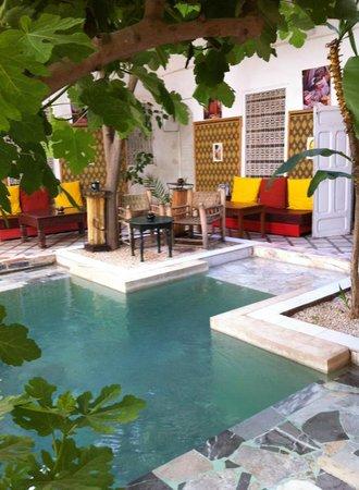 Riad So Cheap So Chic: mini swimming pool