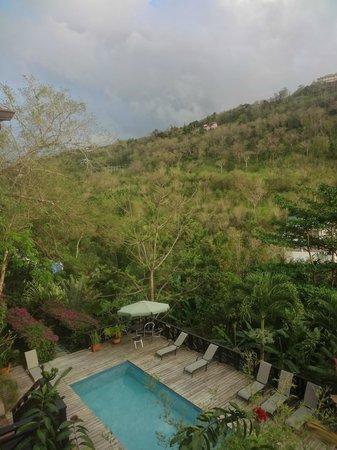 Villa Pomme d'Amour: piscine vu de la chambre