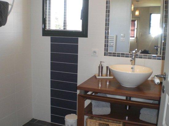 Entre Vignes et Chateaux: salle de bain