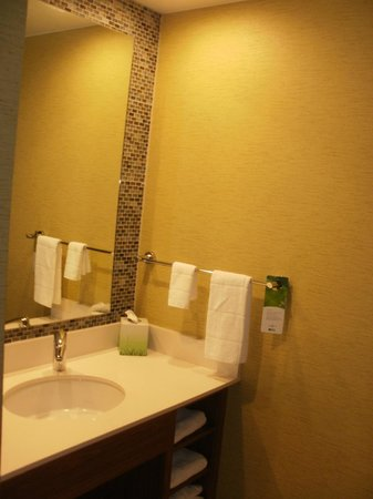 SpringHill Suites Pittsburgh Latrobe: Shower and sink area