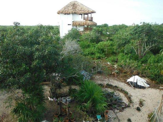 Casa Blat Ha: Rodeado de naturaleza