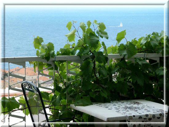 Apartments Lora : View from the terrace