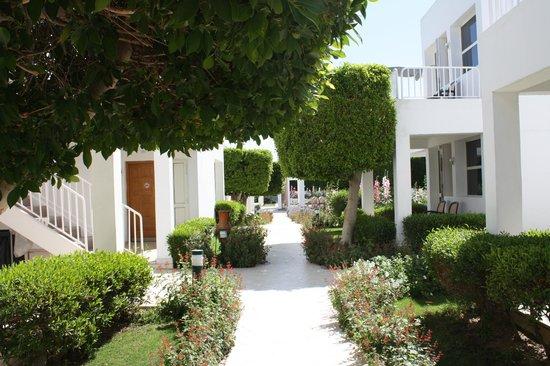 Maritim Jolie Ville Resort & Casino Sharm El-Sheikh : Gardens