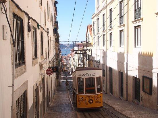 My Lisbon Holidays: Lisbon trams