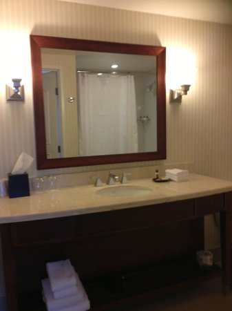 Sheraton Carlsbad Resort and Spa : ample space