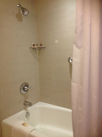 Sheraton Carlsbad Resort and Spa: good size shower/tub combo