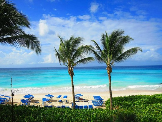 Dover, Barbados: Gorgeous view!