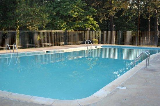 Cozy Acres Campground: Pool