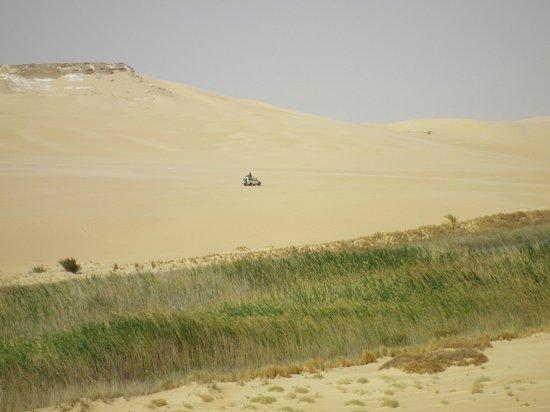 Great Sand Sea: Sabbia ed acqua