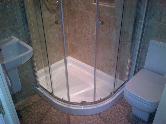 Abbot's Leigh Guest House: Bathroom