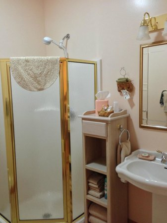 Berry Springs Lodge: Bath with small shower (only slight negative regarding accommodations)