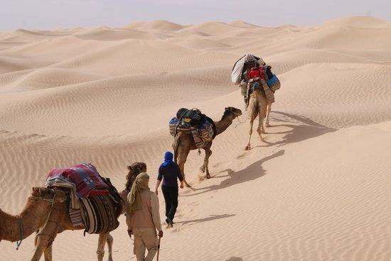 Houmt Souk, Tunísia: Randonnée chamelière dans les dunes du Grand Erg Oriental avec l'agence de voyages Autre Tunisie