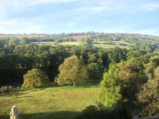 Gliffaes Country House Hotel: lovely morning view.