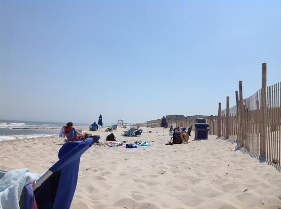 Sea Shell Resort and Beach Club Photo