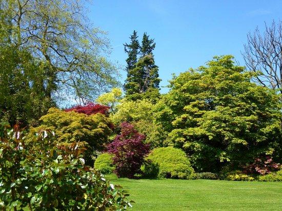Singleton Park: tapestry of green