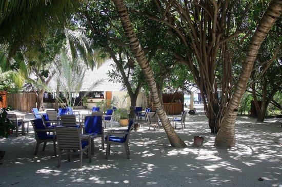 Olhuveli Beach & Spa Maldives : petite place à l'ombre