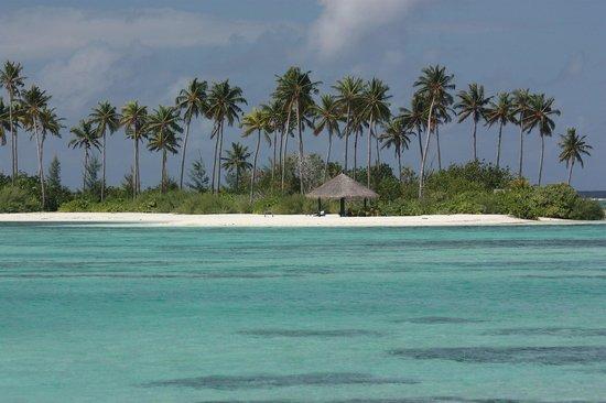 Olhuveli Beach & Spa Maldives : que du bonheur