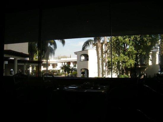 Guadalajara Plaza Ejecutivo Lopez Mateos: Desde el Restaurant