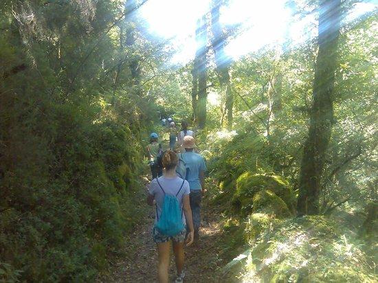 Casa Rural Vilalen: Paseo por el río