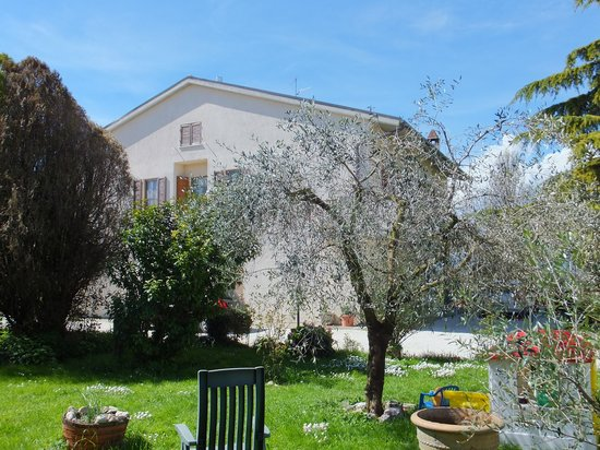 Bed and Breakfast Cascina Antonini: Il giardino