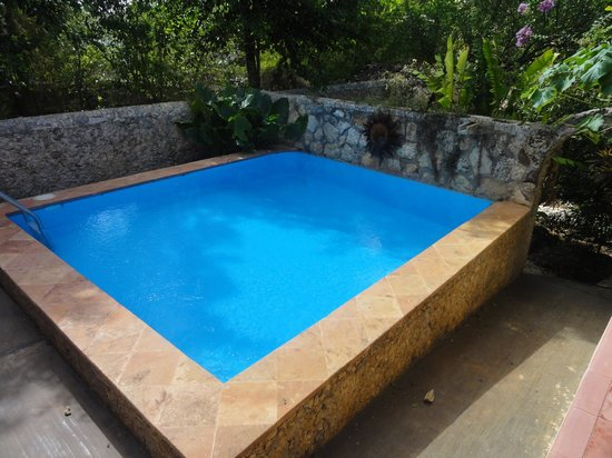 Casa Hamaca Guesthouse: Pool