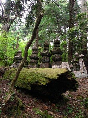 Henjoko-in: The cemetery