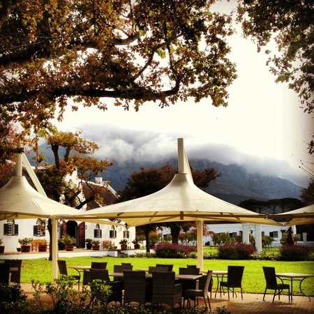Steenberg Hotel: View from my seat at Catharina's; mist rolling in from the mountains on a rainy day.