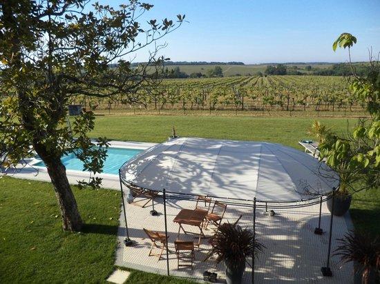 Domaine du Mayne: Zwembad en de wijngaard aan de zuidkant