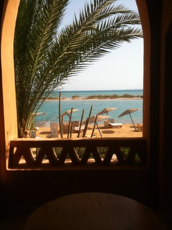 Sheraton Miramar Resort El Gouna: View from our window