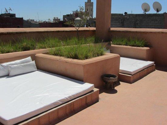 Zaouia 44: Roof sunbeds