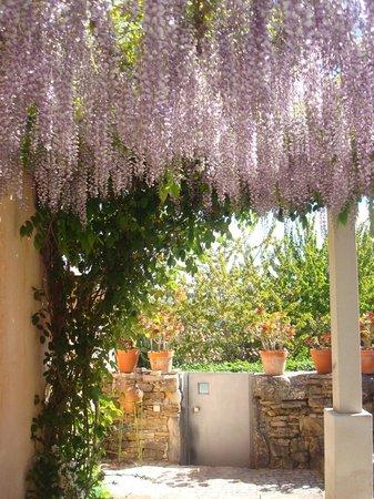 Villa Pedra Natural Houses: Entrada da casa da amendoeira