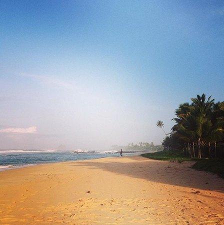 Asanka Guesthouse : The Midigama beach