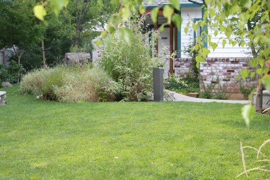 Grass Valley Courtyard Suites : Lawn Area