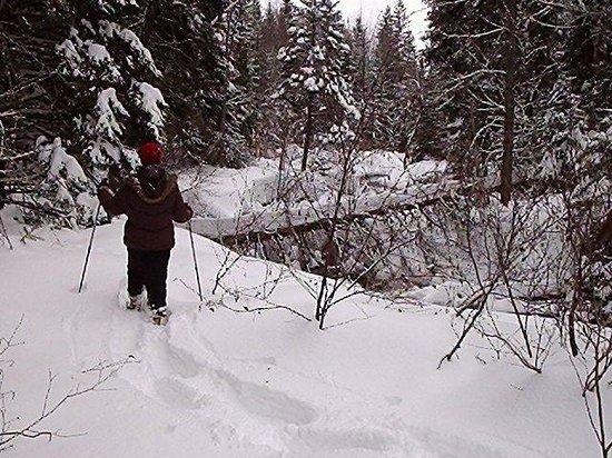 Serenita Spa Auberge: La raquette/Snowshoeing