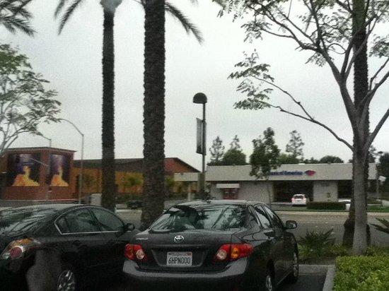 Hilton Garden Inn Anaheim/Garden Grove : Across the street veiw