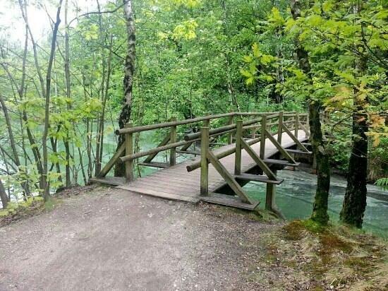 Landal Het Vennenbos : Typical bridge that links the site over the lakes