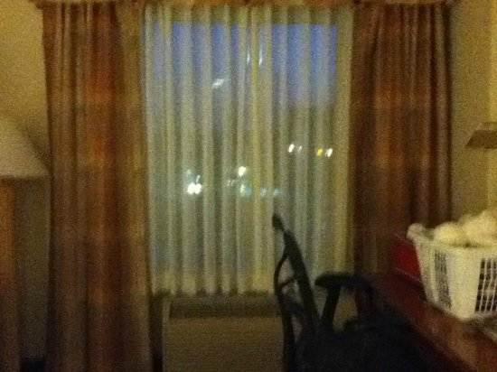 Hilton Garden Inn Anaheim/Garden Grove : Window in room