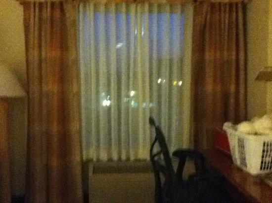Hilton Garden Inn Anaheim/Garden Grove: Window in room