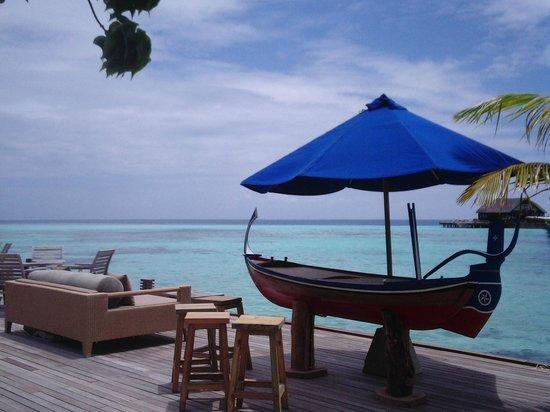 Olhuveli Beach & Spa Maldives : panorama dal bar