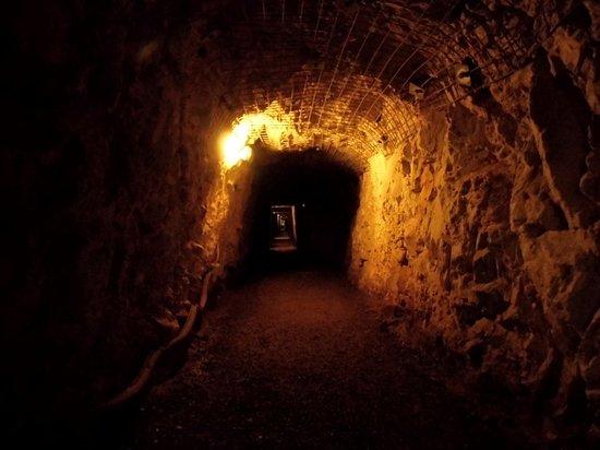 Il Parco Archeominerario di San Silvestro: Interno miniera