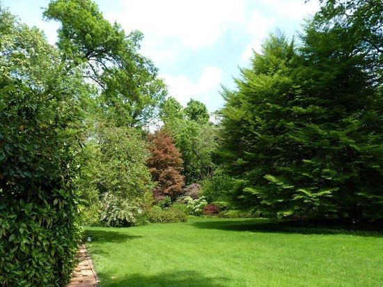 Le Notti in Villa: Garden